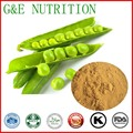 Factory Supply directly pea protein powder with reasonable price