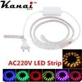 60 LED/M 5050 SMD Flexible RGB Strip Light Roll Super Bright High Voltage IP55 Power Plug 220V
