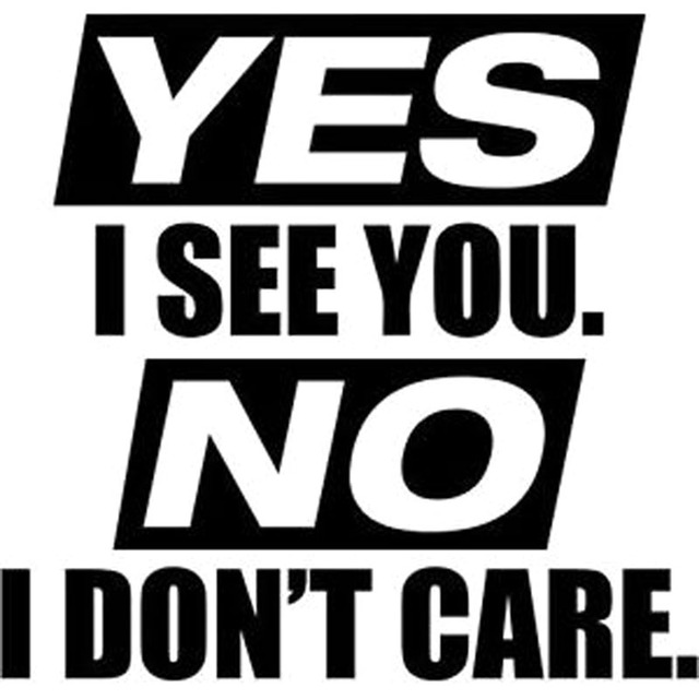16x15 3cm yes i see you no i dont care humorous car