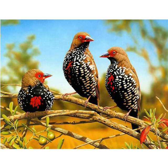 bird pittura diamante animali home decorazione della casa foto fai