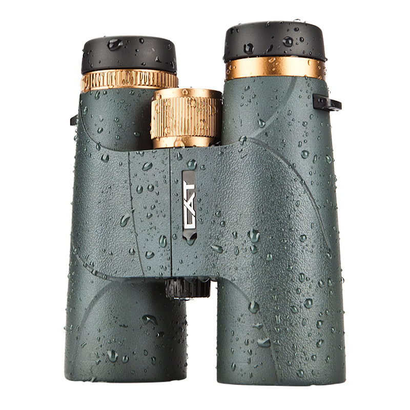 BOSMA Binoculars  Telescope Golden Tiger II High-definition Low-light Night Vision Professional Portable Binoculars