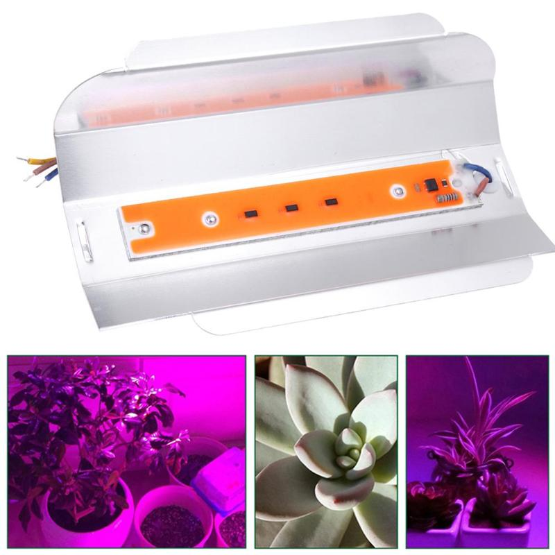 30W Full Spectrum COB Led Grow Light Plant Flower Vegetable Growing Phyto Lamp Waterproof Indoor Greenhouse Hydroponics System