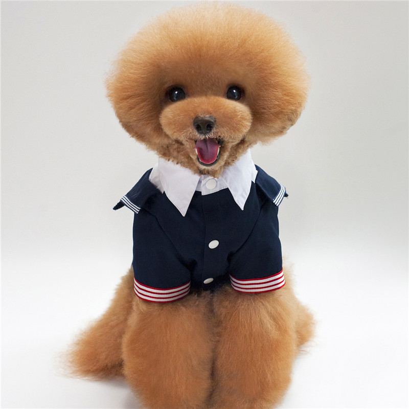 Bigeyedog Dog Wedding Suit Boy Dog Clothes Coat Jacket Tuxedo Male ...