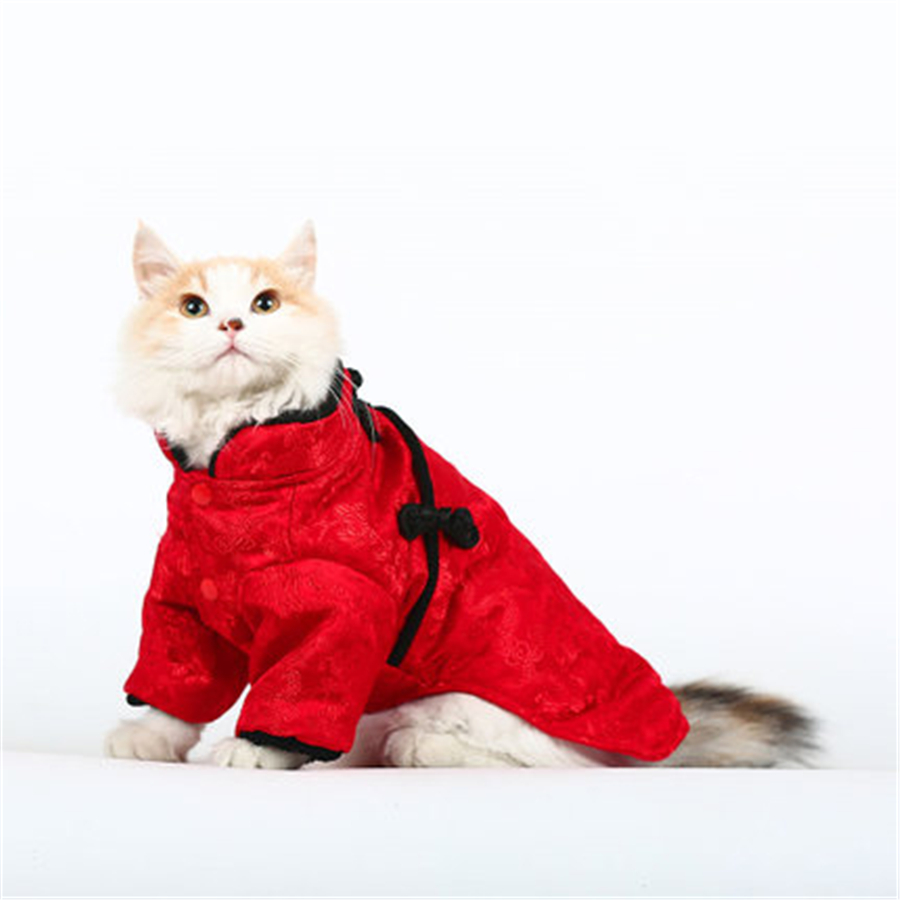 Clothes Cats Wear Funny Costume For Cats Pet Costume Pet Cat Clothes Disfraces Para Perros Tuxedo Cat Costume QQM1994-in Cat Clothing from Home u0026 Garden on ...  sc 1 st  AliExpress.com & Clothes Cats Wear Funny Costume For Cats Pet Costume Pet Cat Clothes ...