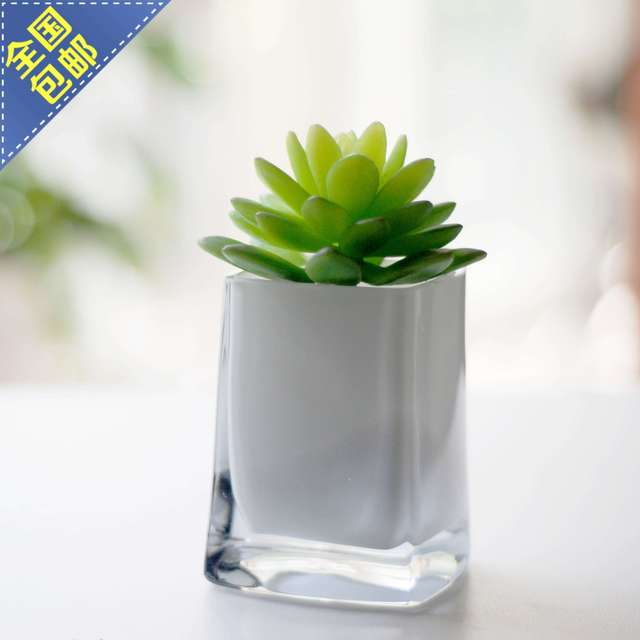 Glass White Cup Ikea Style Small Table Countertop Flower Plant Pot
