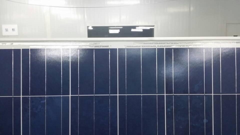 250w solar panel (5)