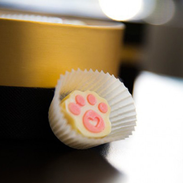 2PCS Puppy Paw and Bone Silicone Molds