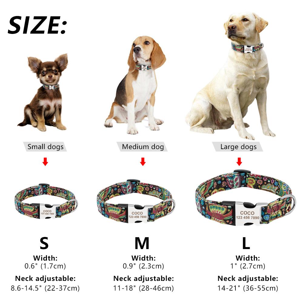 Collar personalizado de Nylon para mascota 1