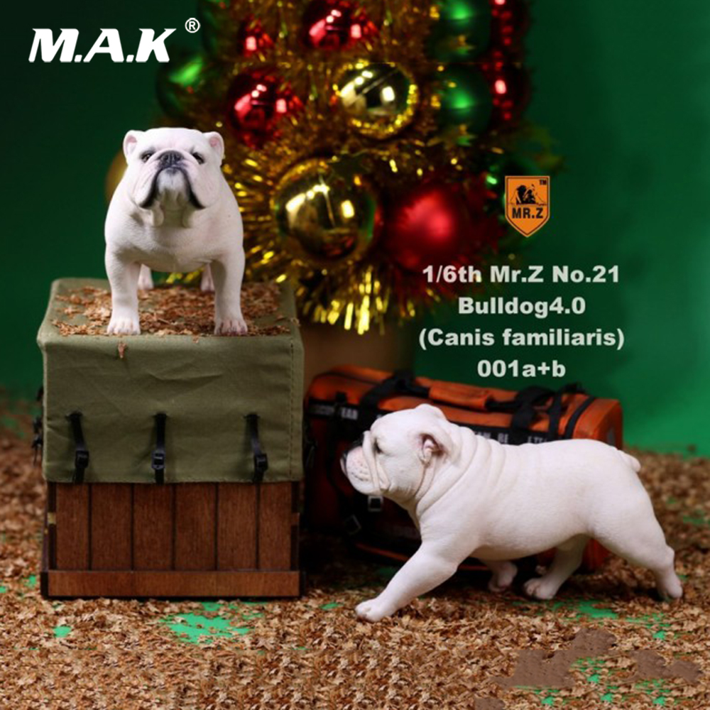 For Collection 2 Pcs/Set 1/6 Mr.Z NO.021 English Bulldog 4.0 Figure Canis Familiaris Animal Model Toy YD001-YD006 Figure Gift цена