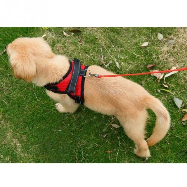 M/L/ XL Big Dog Soft Adjustable Harness for Small and Large Dogs Walk Out Harness Vest Collar Hand Strap Hot Sale