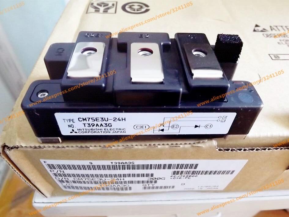 Livraison gratuite nouveau MODULE CM75E3U-24H
