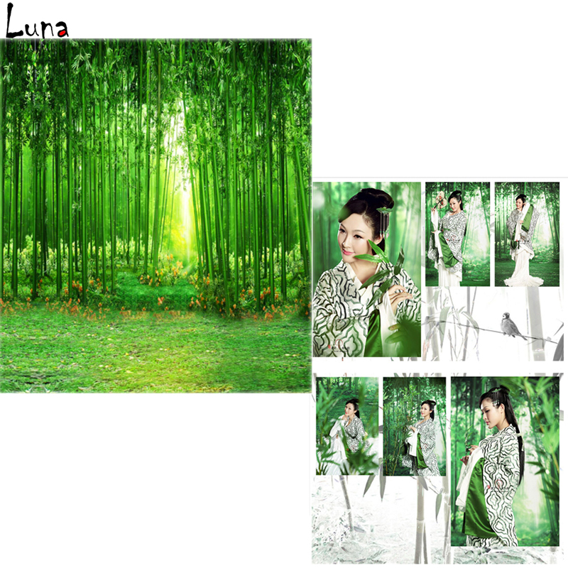 Chinoiserie Vinyl Background For Photo studio bamboo forest Personal portrait Oxford Backdrop For Photography Props opi лак для ногтей if you persist infinite shine nail lacquer 15мл