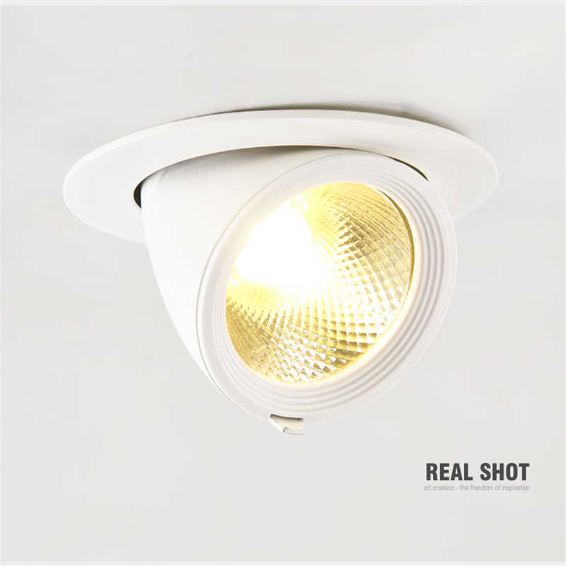 85-265Vac  5-40W LED COB embedded down lamp ,Rotatable 3000K,4000K,6000K ceiling trunk light for dress,painting accent lamp