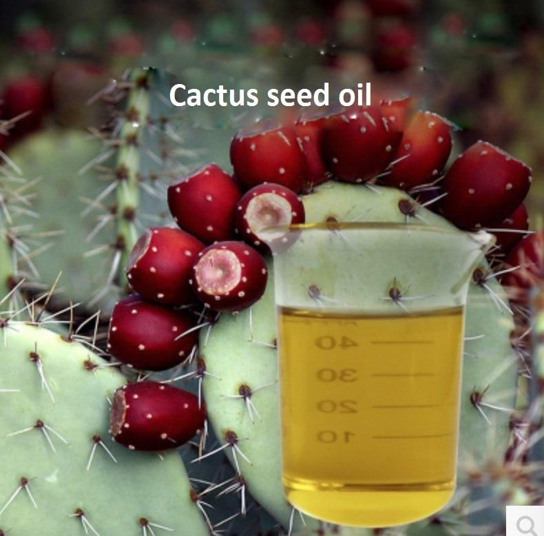 Kosmetický masážní olej 10g / láhev Kaktusový olej základní esenciální olej, organické za studena lisované Kaktusové semeno