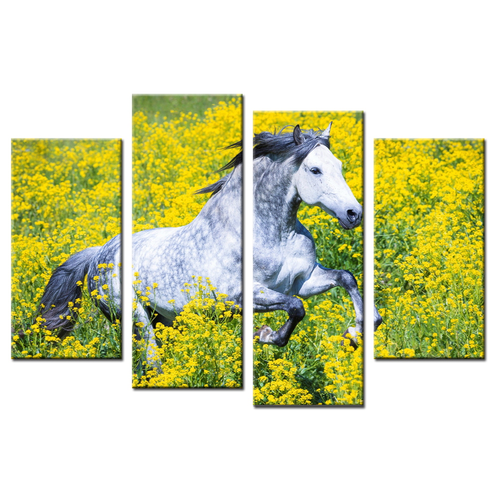 Modular Pictures Paint Canvas White Horse Yellow Flower Poster Print ...