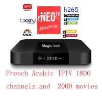 Subsription Neotv Android tv box iptv arabo Europa iptv mag250 M3U coppa del mondo 2018 canali sportivi Neo tv