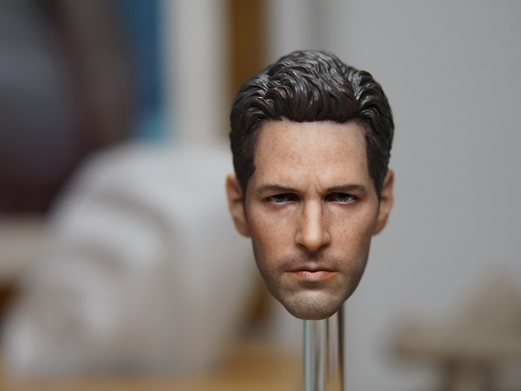 1/6th scale figure Accessory Ant-Man headsculpt Paul Rudd head shape for 12 Action figure doll ,Not included body and clothes 1 6th scale doll accessory conan the barbar headsculpt schwarzenegger head shape for 12 action figure not included body clothes