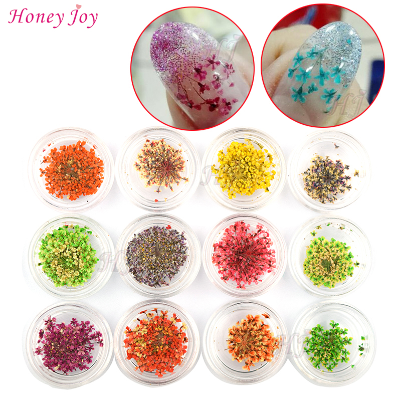 12bottles 3D Real Dried Dry Flower Nail Art Decoration UV Gel Nails Stickers Nails Manicure Tips Decals with 12 Different Colors 12colors box dried dry flowertips nail 3d nail art decoration uv gel polish stickers manicure tips decals