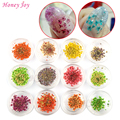 12bottles 3D Real Dried Dry Flower Nail Art Decoration UV Gel Nails Stickers Nails Manicure Tips Decals with 12 Different Colors