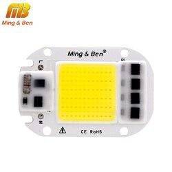 Светодиодный чип COB для лампы 20 Вт 30 Вт 50 Вт AC 110 В 220 В умный IC светодиодный Бисер для DIY светодиодный прожектор для выращивания лампы белый хо...