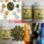 3 botellas/porción de Polvo de Hoja de Moringa Oleifera 90 Caps * 500 mg cada uno (Pura y Natural) Envío gratis (ehe050)