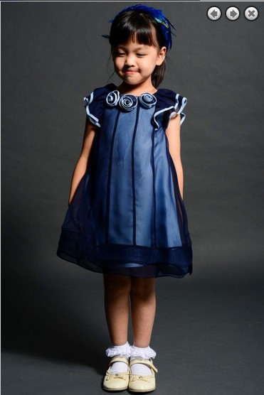 free shipping 2016 blue Organza new style princess   dress   party   Girl's   Pageant Gowns Formal   Flower     Girl     Dresses