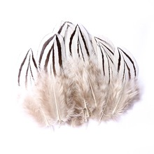 Carnival Boutique Decoration 30 Chicken Feathers Natural 4-7CM Wedding Dress DIY Fluffy Crafts