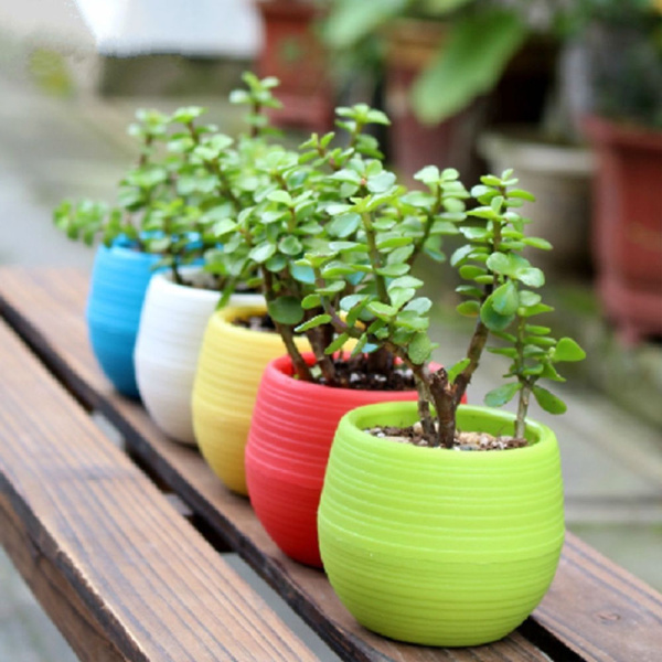 whoelsae colourful mini round plastic plant flower pot for home