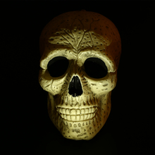 Human Skeleton Head Decoration Plastic Halloween Man Skull Decor Props