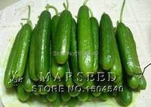 20 seeds/pack Fruit cucumber green and ornamental vegetables seeds C100