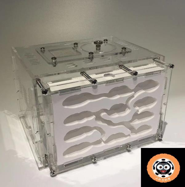 Insect Cage Ant-Nest House Ant Farm Ants-Queen Acrylic Anthills Pet Hormigas Plaster