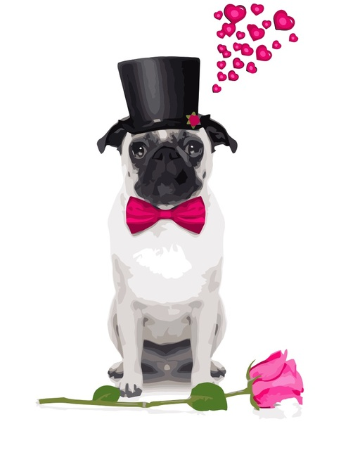 Fantastic Valentine Bow Adorable Dog - MaHuaf-i641-Valentine-Day-cute-dog-DIY-painting-by-Numbers-animal-Hand-painted-canvas-oil-paintings  Snapshot_311310  .jpg