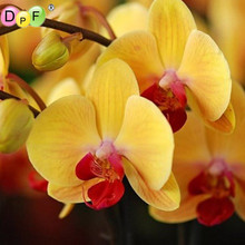 3d DIY Diamond Painting Cross Stitch orchid Diamond embroidery Needlework square full Home Decor floral pictures crafts