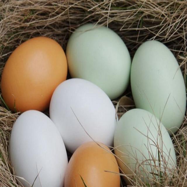 (En iyisi) Okul öncesi Yumurta Boyama