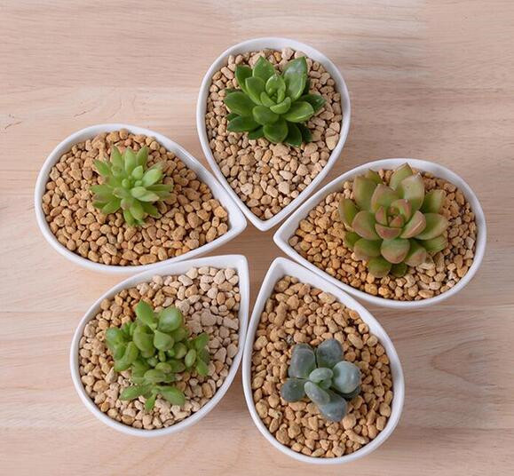 Great Idea For Small Plants Cute White Ceramic Drop shape Flower Pot Table
