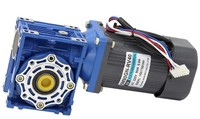 90W 220v worm gear motor(motor + governor) RV40 single phase AC motor can CW and CCW motor