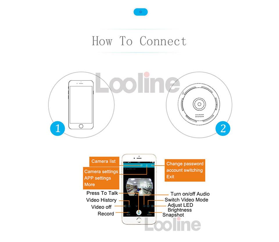 looline_08