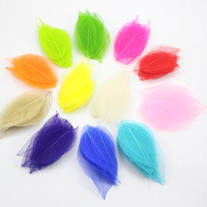 Image 1 - Lucia crafts 40pcs/100pcs 6.5*3cm Random mixed color Natural skeleton leaves for Party Home Decor DIY Handmade Materials C0702
