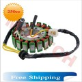 DC 18 Coil Magneto Stator for GY6 250cc CF250 CH250 Scooter Moped ATV (Free Shipping)