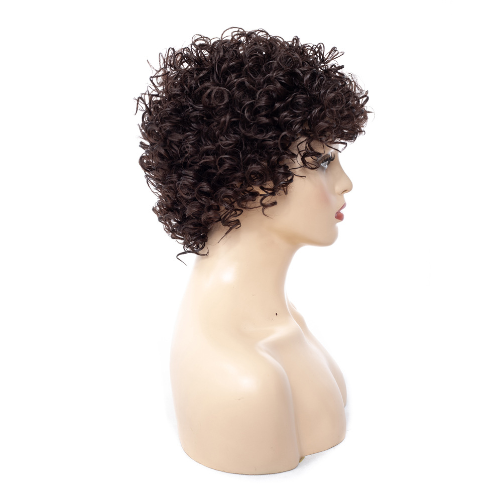 Image 3 - Short Kinky Curly Afro Wig Heat Resistant Wigs For Women Brown Nautral Cosplay Costume Party Synthetic Hair YxCheris-in Synthetic None-Lace  Wigs from Hair Extensions & Wigs