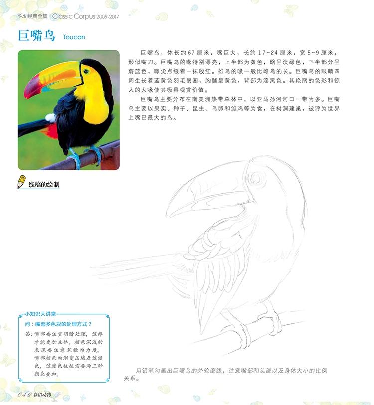 book chinese