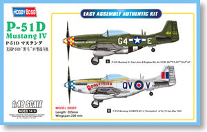 Image May Contain Airplane Volks Usa Scale Models Added