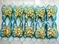 10 pcs Cuidados Pessoais Higiene Oral Dental Sistema de Branquear Os Dentes Dental Temporário Material Crown Para Dentes Anteriores e Dentes Molares