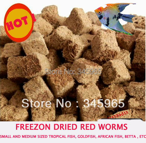 Ver rouge à fil en coton | Livraison gratuite, vers à sec, vers rouges, Ranchu poisson rouge, petit poisson Oscar, nourriture pour poissons 100g