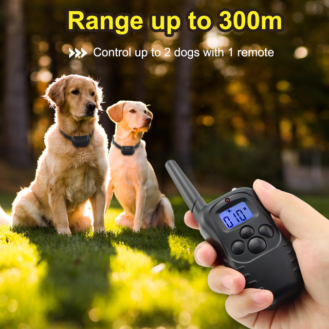 Petrainer 998DR-1 300M Remote Electric Shock Vibration Rechargeable Rainproof Pet Dog Training Collar With LCD Display 4