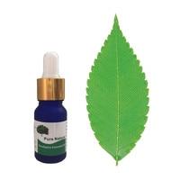 acne remover! 100% Pure eucalyptus essential oil for acne treatment and Remove whelk shrink pore face care tea tree oil 10ml Essential Oil