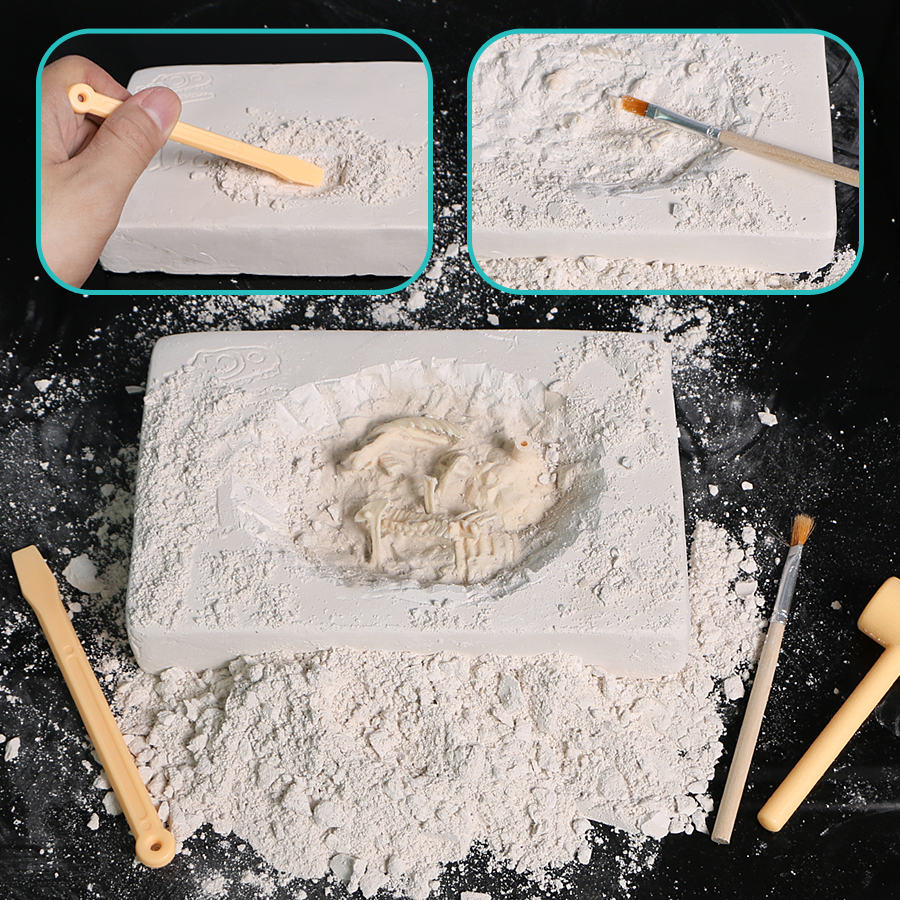 Aliexpress com : Buy dig and discover dinosaur Skeleton excavation  kit extract the bones from the clay block with the digging tools Creative  Toys from