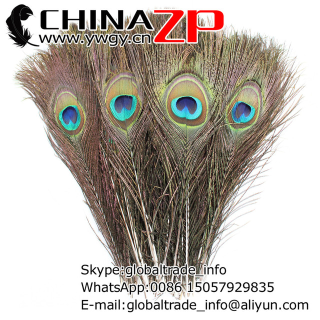 Wholesale in CHINAZP Factory 100pcs/lot length 25~30cm(10~12inch) Top Quality Natural Peacock Feathers
