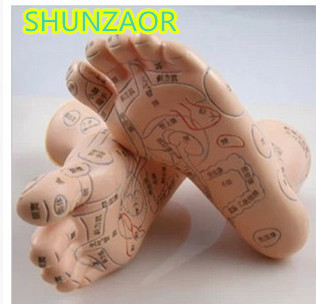 все цены на SHUNZAOR Mreflex zone foot massage acupuncture model reflex zone foot massage acupuncture and Chinese medicine specific model в интернете