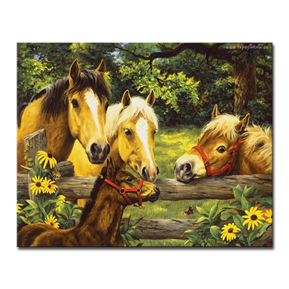 Framework DIY Oil Painting By Numbers Kits Coloring Drawing Horse ...